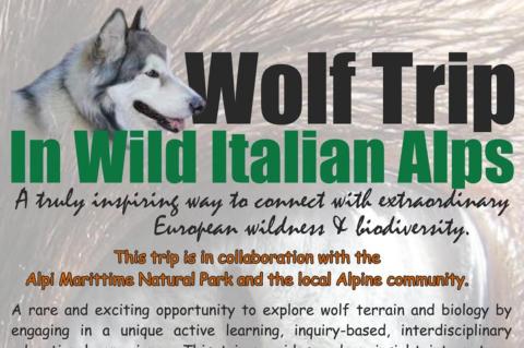 Wolftrip